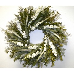 Boxwood Caspia Wreath