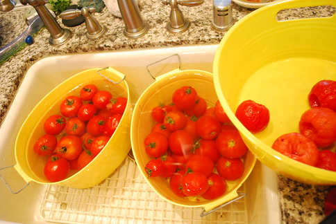 Two tubs to cool and one for holding peeled tomatoes!